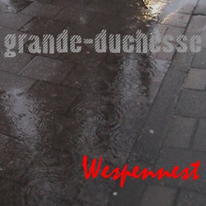 Wespennest (single) - 2010